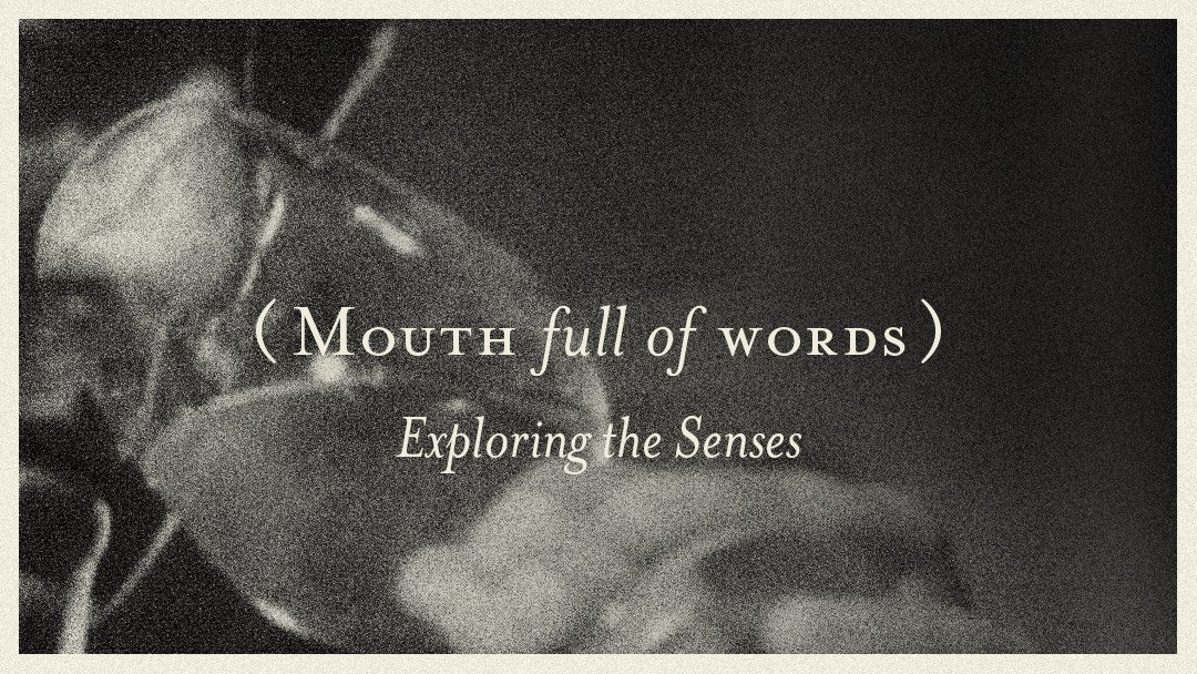 Mouth full of Words – Exploring the Senses